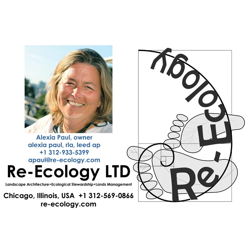re-ecology-logo-Model-002-SQ-profile-pic